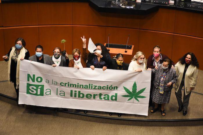 Sesión Senadores Cannabis
